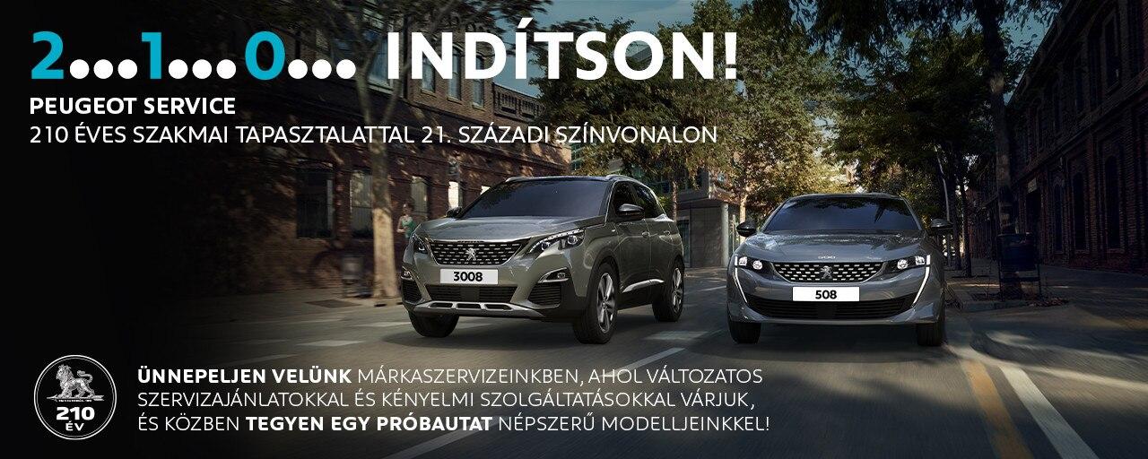 Peugeot téli szervizakció
